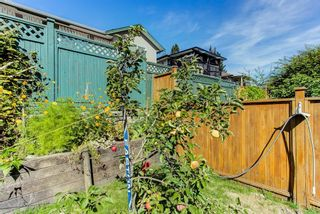 Photo 35: 24017 109 Avenue in Maple Ridge: Cottonwood MR House for sale : MLS®# R2615722