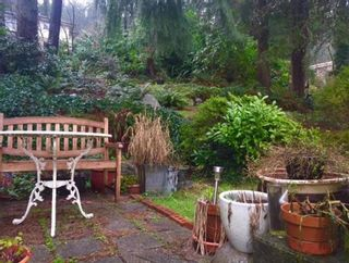 Photo 9: 2379 PANORAMA DRIVE in North Vancouver: Deep Cove House for sale ()  : MLS®# R2041333