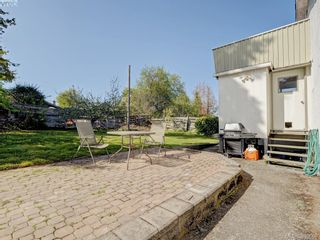 Photo 19: 3246 Irma St in VICTORIA: SW Rudd Park House for sale (Saanich West)  : MLS®# 785071