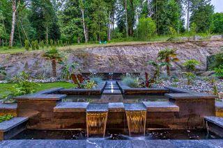 Photo 35: 25588 GODWIN Drive in Maple Ridge: Whonnock House for sale : MLS®# R2462819