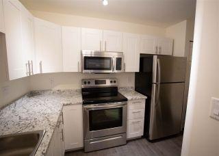 """Photo 3: B208 40120 WILLOW Crescent in Squamish: Garibaldi Estates Condo for sale in """"DIAMOND HEAD"""" : MLS®# R2533251"""