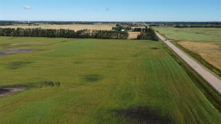 Photo 4: Twp 474 Hwy 795: Rural Wetaskiwin County Rural Land/Vacant Lot for sale : MLS®# E4211589