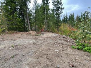 Photo 11: 292 Terry Road, in Enderby: Vacant Land for sale : MLS®# 10239679