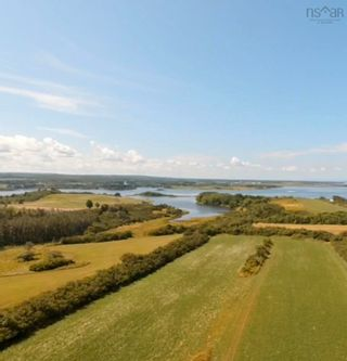 Photo 9: 11.6 acres East Tracadie Road in East Tracadie: 301-Antigonish Vacant Land for sale (Highland Region)  : MLS®# 202122282