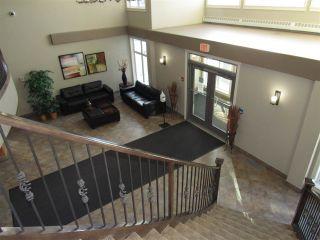 Photo 6: 308 12408 15 Avenue in Edmonton: Zone 55 Condo for sale : MLS®# E4229121