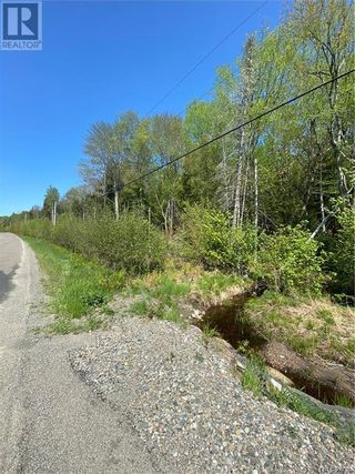 Photo 4: 5264 Rte 770 in Rollingdam: Vacant Land for sale : MLS®# NB058269