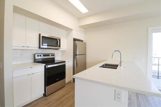 Photo 6: PH00 50 Philip Lee Drive in Winnipeg: Crocus Meadows Condominium for sale (3K)  : MLS®# 202115896