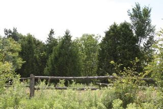 Photo 4: 11358 County Road 2 Rd in Grafton: Land Only for sale : MLS®# 511350277