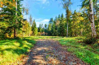 Photo 16: 30255 BRACKLEY Avenue in Mission: Stave Falls Land for sale : MLS®# R2527114