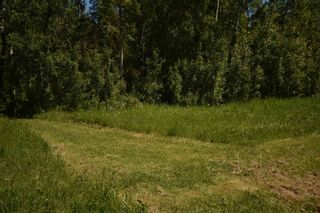 Photo 7: 19 Village West Estates: Rural Wetaskiwin County Rural Land/Vacant Lot for sale : MLS®# E4251066
