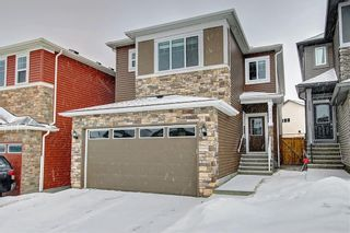 Photo 1: 349 NOLANHURST Crescent NW in Calgary: Nolan Hill Detached for sale : MLS®# C4280058
