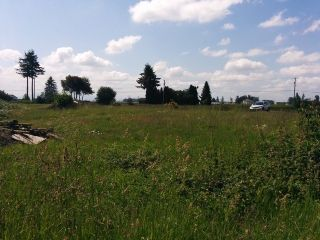 Photo 3: 29700 HUNTINGDON Road in Abbotsford: Aberdeen Land for sale : MLS®# F1415007