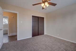 Photo 15: 6139 Buckthorn Road NW in Calgary: Thorncliffe Detached for sale : MLS®# A1070955