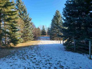 Photo 31: 6 53420 RGE RD 274: Rural Parkland County House for sale : MLS®# E4235414