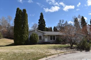 Photo 24: 205 Cartha Drive in Nipawin: Residential for sale : MLS®# SK852228