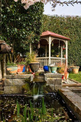 Photo 33: 445 Constance Ave in : Es Saxe Point House for sale (Esquimalt)  : MLS®# 871592