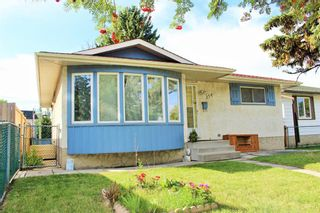 Photo 2: 254 Dovercliffe Way SE in Calgary: Dover Detached for sale : MLS®# A1146227