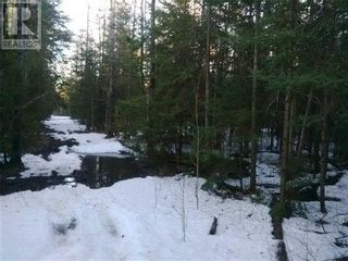 Photo 7: NA CONCESSION ROAD 9 RD in Tehkummah: Vacant Land for sale : MLS®# X5365128
