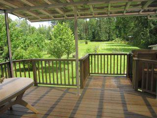 Photo 13: 11744 246 Street in Maple Ridge: Cottonwood MR House for sale : MLS®# R2374206