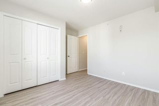 Photo 23: 306 2000 Citadel Meadow Point NW in Calgary: Citadel Apartment for sale : MLS®# A1055011