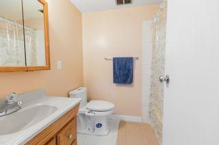 Photo 33: 4011 19 Avenue in Edmonton: Zone 29 House for sale : MLS®# E4248497