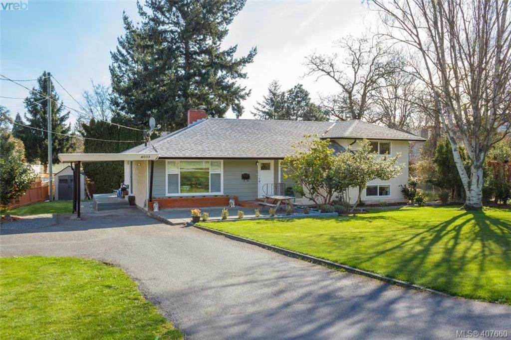 Main Photo: 4033 Cedar Hill Rd in VICTORIA: SE Mt Doug House for sale (Saanich East)  : MLS®# 810108