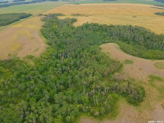 Photo 7: Rm Indian Head 160.39 acres in Indian Head: Farm for sale (Indian Head Rm No. 156)  : MLS®# SK867616