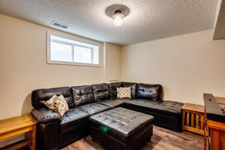 Photo 23: 216 Copperpond Road SE in Calgary: Copperfield Detached for sale : MLS®# A1034323
