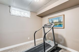 Photo 31: 173 Martinglen Way NE in Calgary: Martindale Detached for sale : MLS®# A1144697