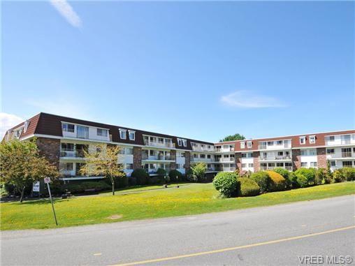 Main Photo: 303 1680 Poplar Ave in VICTORIA: SE Mt Tolmie Condo for sale (Saanich East)  : MLS®# 716765