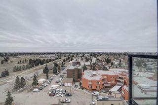 Photo 32:  in Edmonton: Zone 29 Condo for sale : MLS®# E4257177