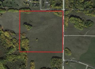 Photo 3: 51213 Rge Road 260: Rural Parkland County Rural Land/Vacant Lot for sale : MLS®# E4251252