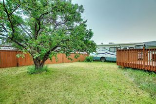 Photo 47: 144 Martinwood Court NE in Calgary: Martindale Detached for sale : MLS®# A1126396