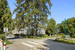 """Photo 20: 302 2268 WELCHER Avenue in Port Coquitlam: Central Pt Coquitlam Condo for sale in """"SAGEWOOD"""" : MLS®# R2484976"""