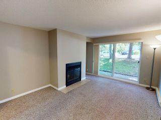 Photo 2: 103 3225 Alder St in : SE Quadra Condo for sale (Saanich East)  : MLS®# 877393