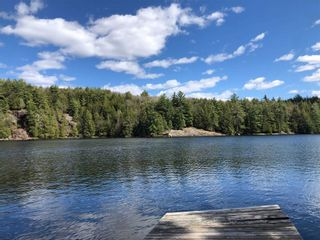 Photo 3: 16 1500 Fish Hatchery Road in Muskoka Lakes: House (Bungalow) for sale : MLS®# X5267124