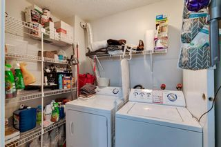 Photo 15: 401 215 14 Avenue SW in Calgary: Beltline Apartment for sale : MLS®# A1143280