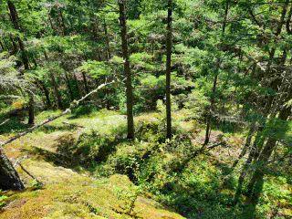 Photo 24: Lot 48 FLINT Road: Keats Island Land for sale (Sunshine Coast)  : MLS®# R2460854