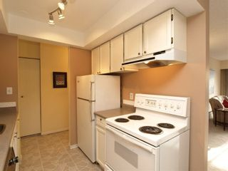 Photo 7: # 304 1515 Chesterfield Avenue in N. Vancouver: Central Lonsdale Condo for sale ()  : MLS®# V803278