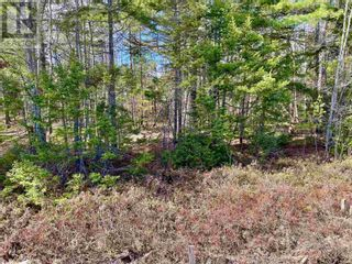 Photo 4: Lot 3 Highway 8 in Harmony: Vacant Land for sale : MLS®# 202108277