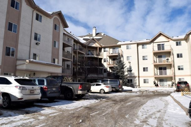 Photo 1: Photos: 215 11218 80 Street in Edmonton: Zone 09 Condo for sale : MLS®# E4223856