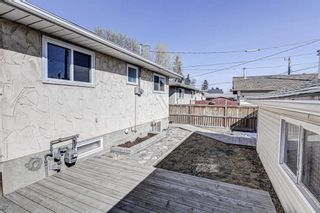 Photo 33: 126 Dovercliffe Way SE in Calgary: Dover Detached for sale : MLS®# A1082276