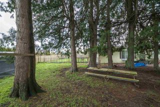 Photo 21: 5905 64 Street in Delta: East Delta House for sale (Ladner)  : MLS®# R2527259