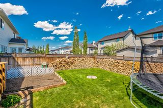 Photo 40: 207 Willowmere Way: Chestermere Detached for sale : MLS®# A1114245