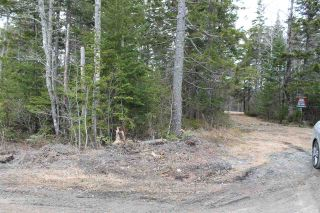 Photo 8: Lot 4 Miller Road in Devon: 30-Waverley, Fall River, Oakfield Vacant Land for sale (Halifax-Dartmouth)  : MLS®# 202007244