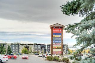 Photo 34: 1207 505 RAILWAY Street W: Cochrane Apartment for sale : MLS®# A1149928