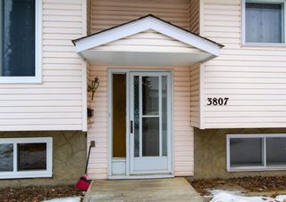 Photo 4: 3807 49 Street NE in Calgary: Whitehorn Detached for sale : MLS®# A1066626
