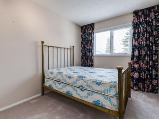 Photo 13: 19 Edenwold Green NW in Calgary: Edgemont Semi Detached for sale : MLS®# A1048156