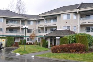 """Photo 1: 338 2451 GLADWIN Road in Abbotsford: Abbotsford West Condo for sale in """"Centennial Court"""" : MLS®# R2240205"""