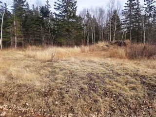 Photo 11: LOT 21 Augsburger Street in Victoria Harbour: 404-Kings County Vacant Land for sale (Annapolis Valley)  : MLS®# 201926264